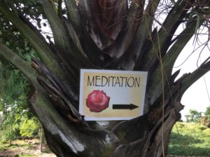 VPF Meditation sign